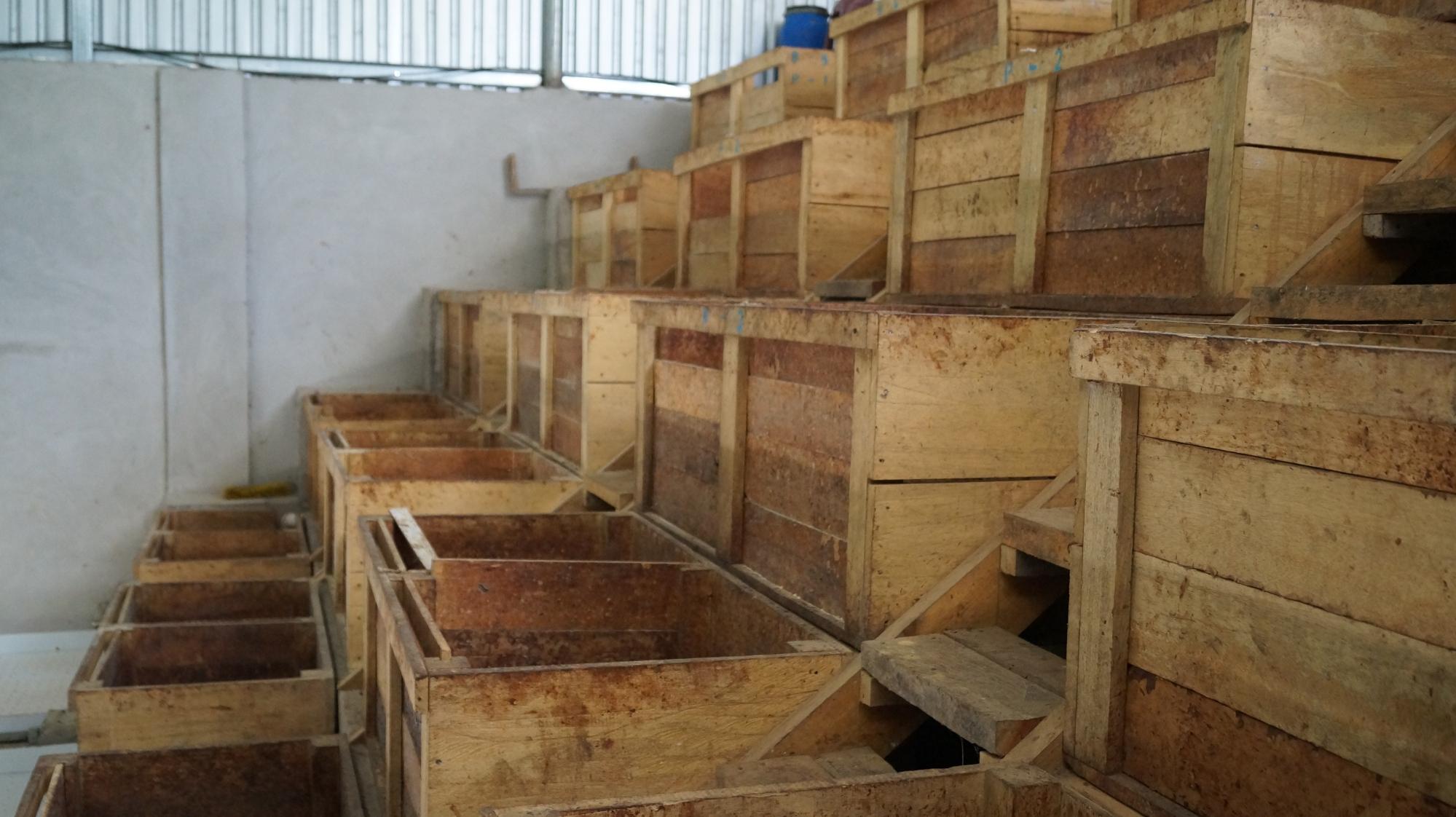 Fermentation boxes