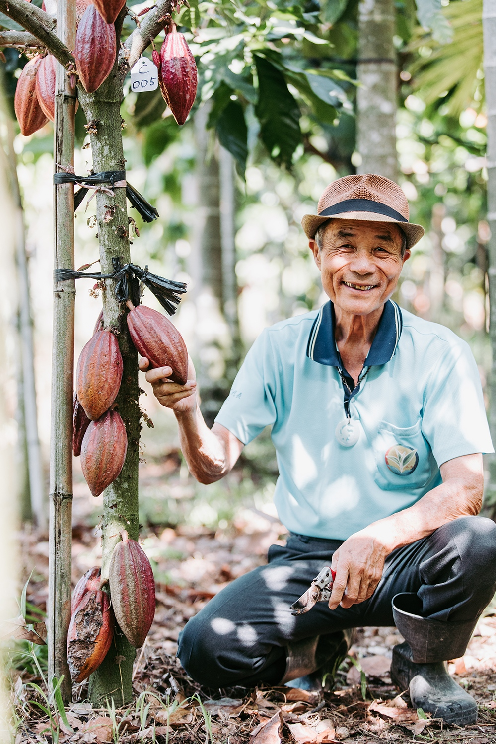 Cacao farmer and his cacao tree in Taiwan